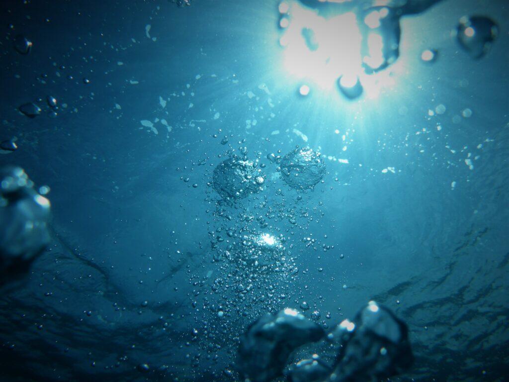 Auch der Wasserverbrauch zur Produktion tierischer Lebensmittel ist hoch.