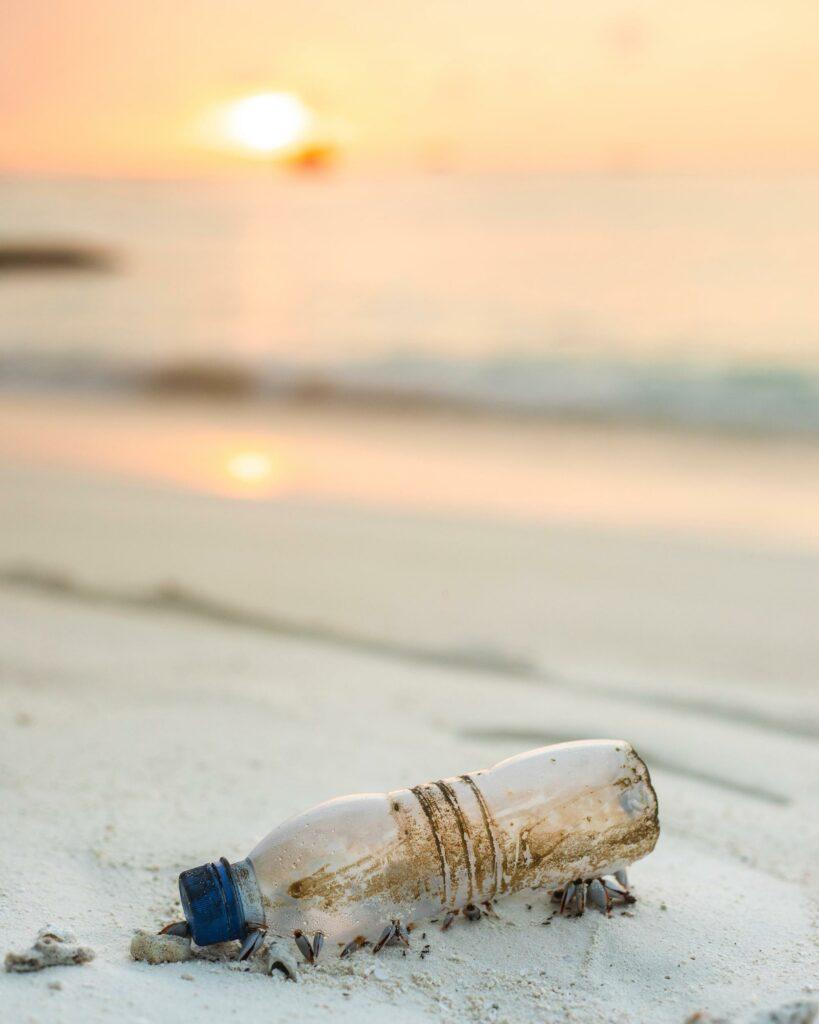 Plastikflaschen sind überall in der Umwelt zu finden.