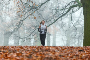A runner in an autumn scenery